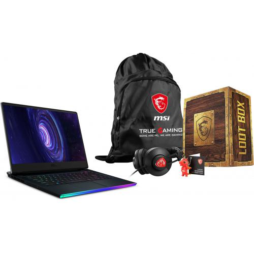 Msi - GE66 Raider 10UE-215FR - Gris + Loot Box Pack - Level 2 - PC Portable RTX Série 3000