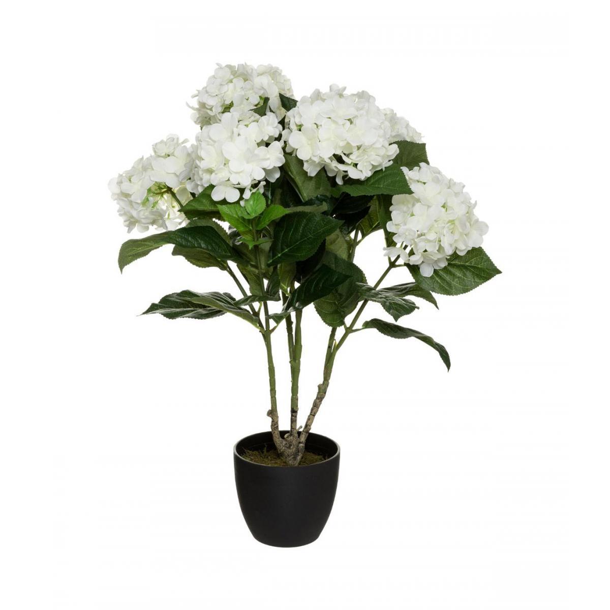Atmosphera, Createur D'Interie Atmosphera - Plante artificielle Hortensia Blanc en pot H 60 cm