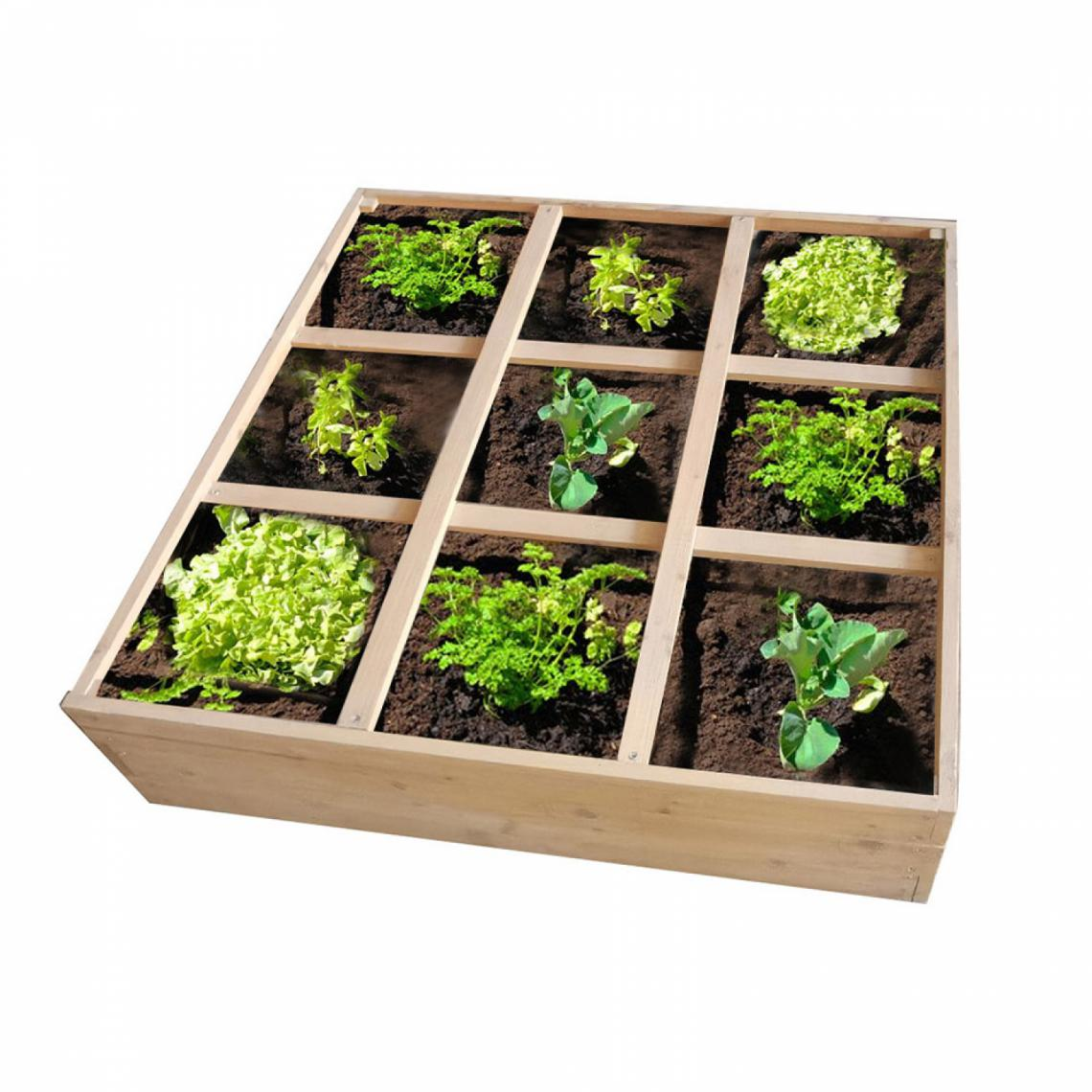 Concept Usine Grow - Carré de potager 9 compartiments