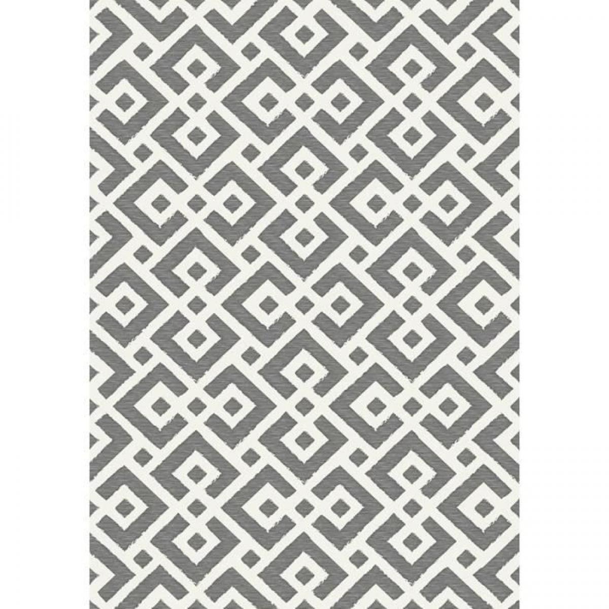 Cstore Tapis intérieur / extérieur - 120 x 170 cm - Gris et blanc