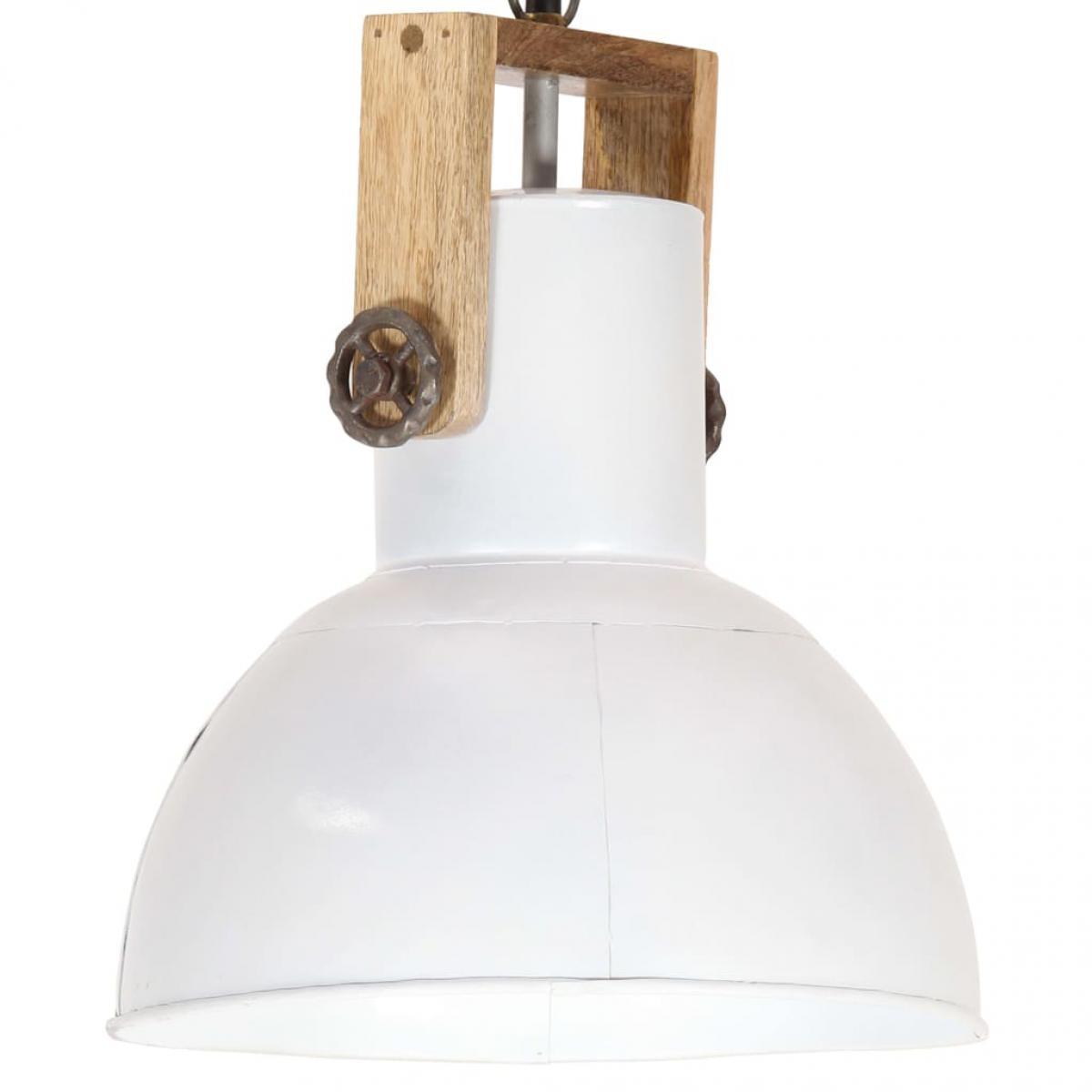 Vidaxl vidaXL Lampe suspendue industrielle 25 W Blanc Rond Manguier 32 cm E27