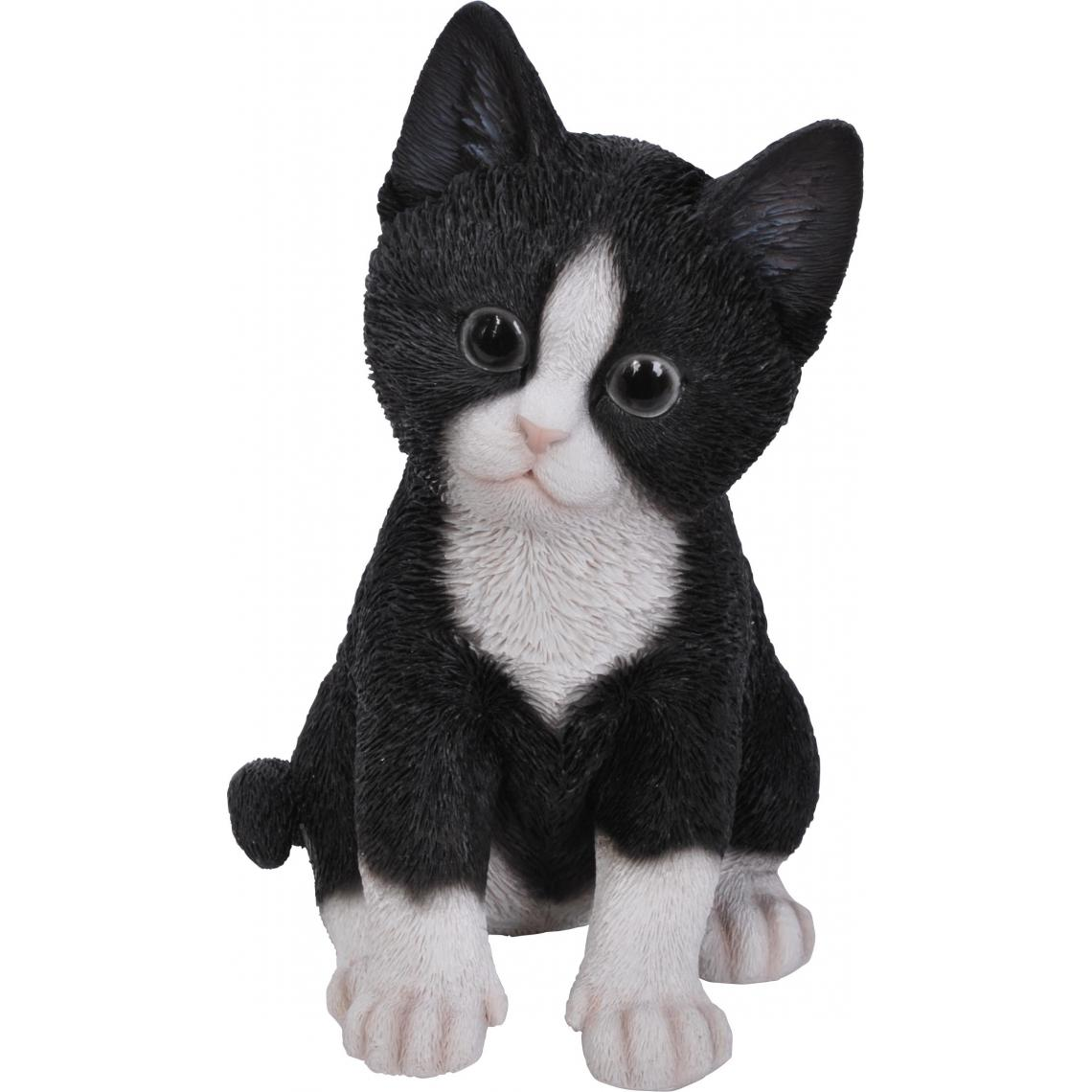 Vivid Arts Chaton en résine 20 cm Kitten