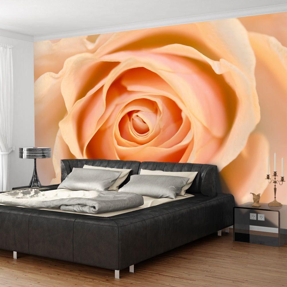 Bimago Papier peint   Peach   350x270   Fleurs   Roses   colored rose  