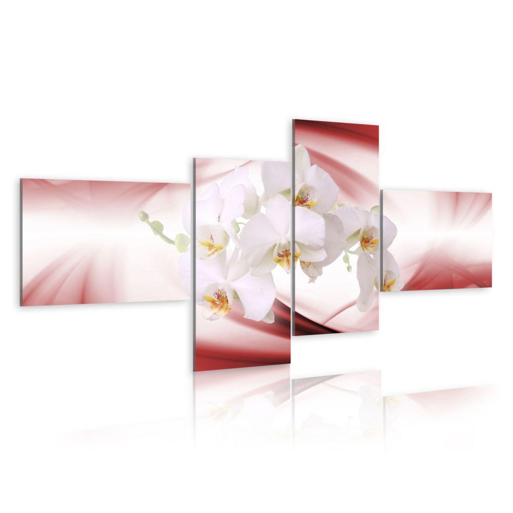 Declina Tableau - Orchidée de couleur rose
