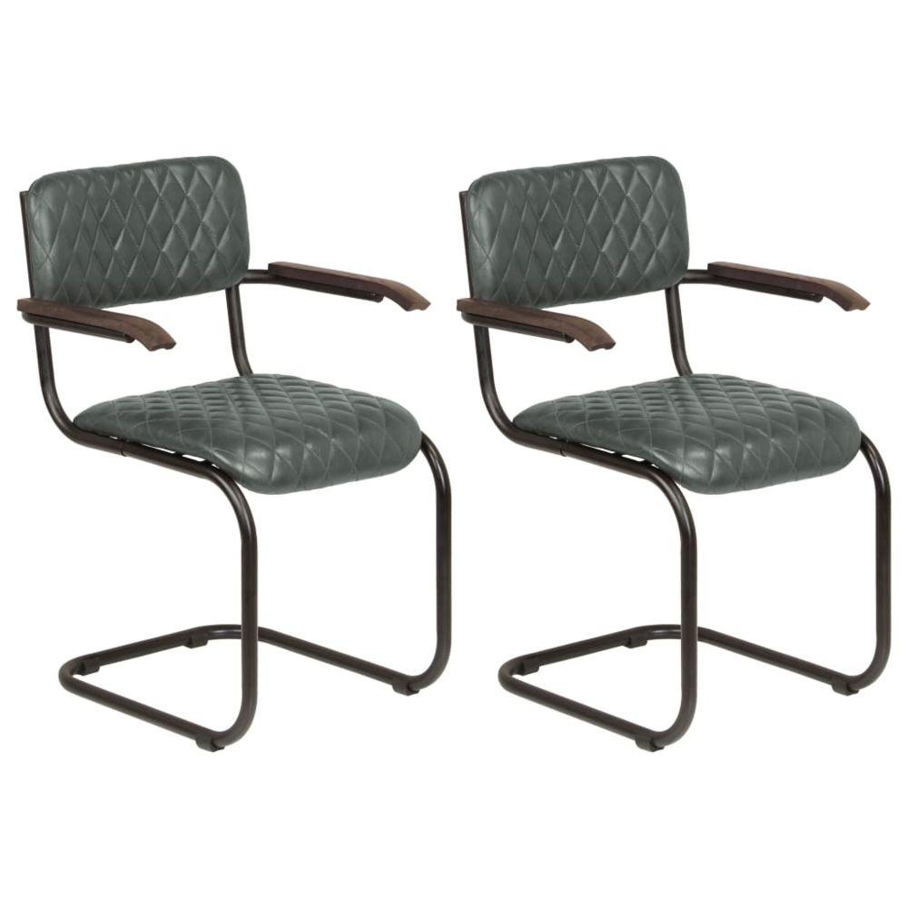 Vidaxl Chaises avec accoudoirs 2 pcs Cuir véritable Gris - Meubles/Fauteuils/Chaises de cuisine et de salle à manger | Gris | G