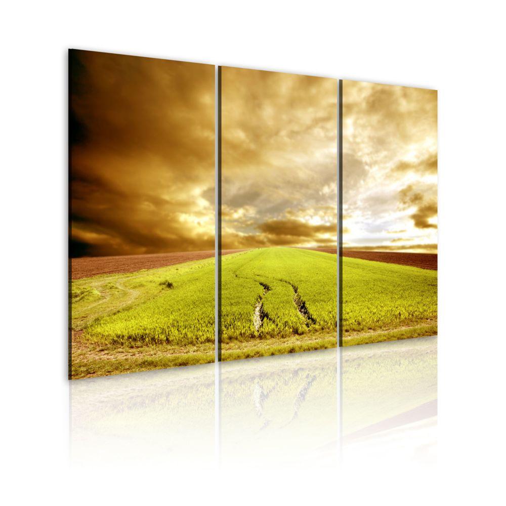 Bimago Tableau   Printemps à la campagne   60x40   Paysages   Plaines et vallées  