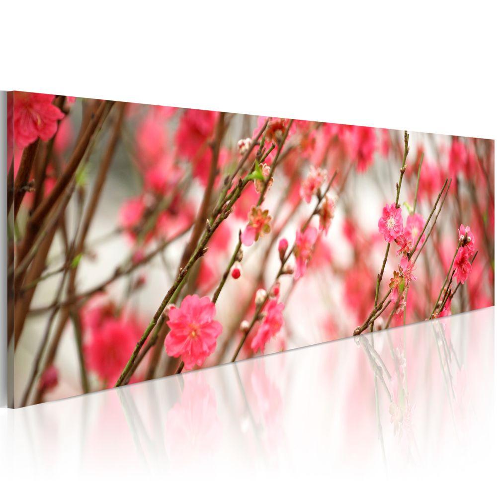 Bimago Tableau   Printemps, oh c'est vous!   120x40   Fleurs   Fleurs variées  