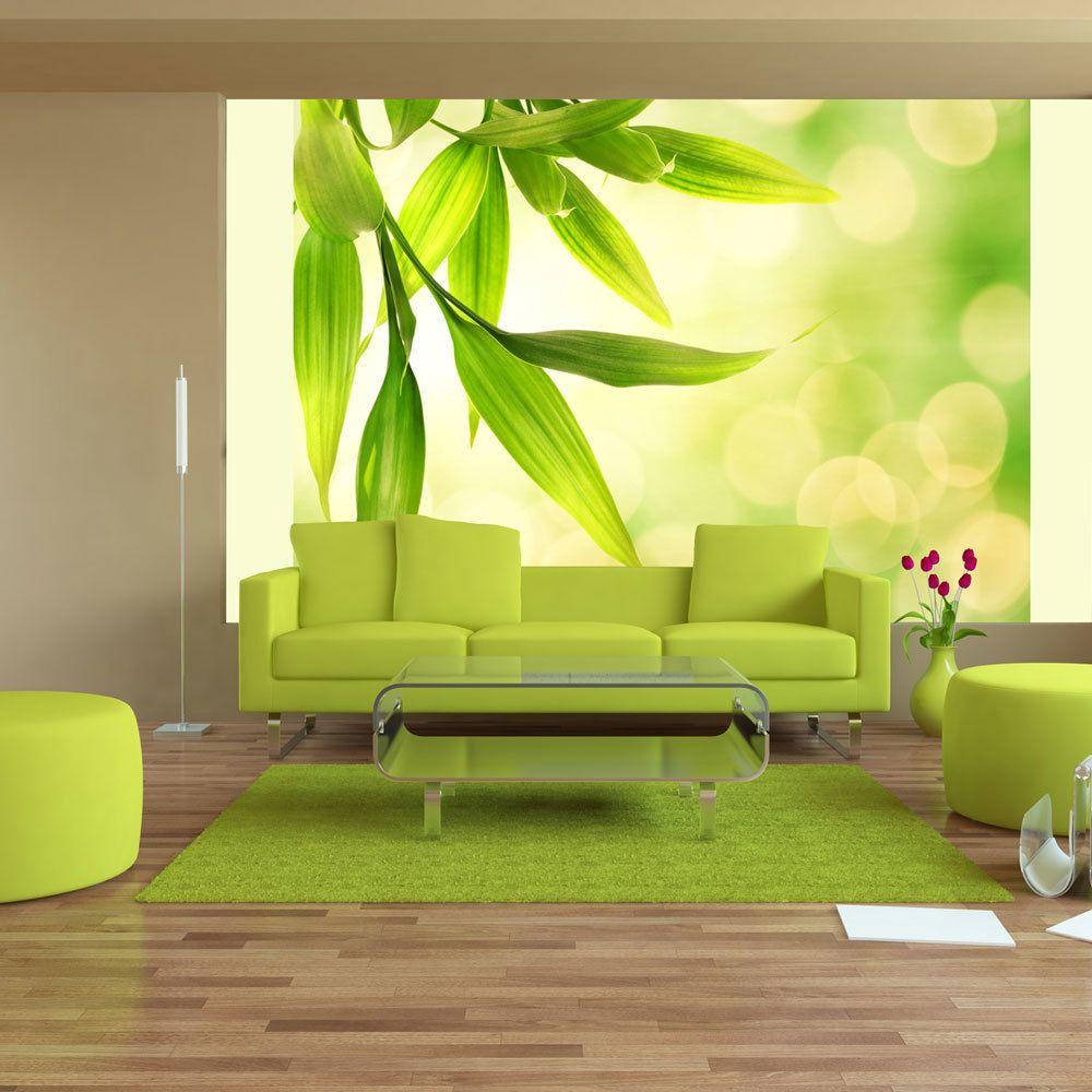 Bimago Papier peint | Feuilles de bambou vert | 300x231 | Paysages | Arbres et Forêt |