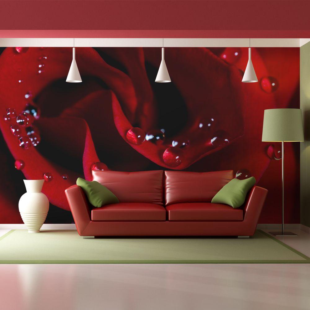 Bimago Papier peint | Rose rouge et gouttes de rosée | 200x154 | Fleurs | Roses |