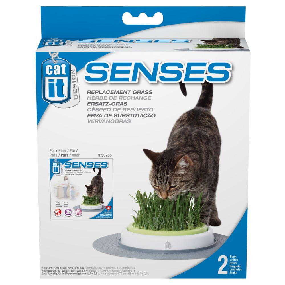 Cat It Cat It - Herbe de Rechange pour Kit de Jardin Senses - x2