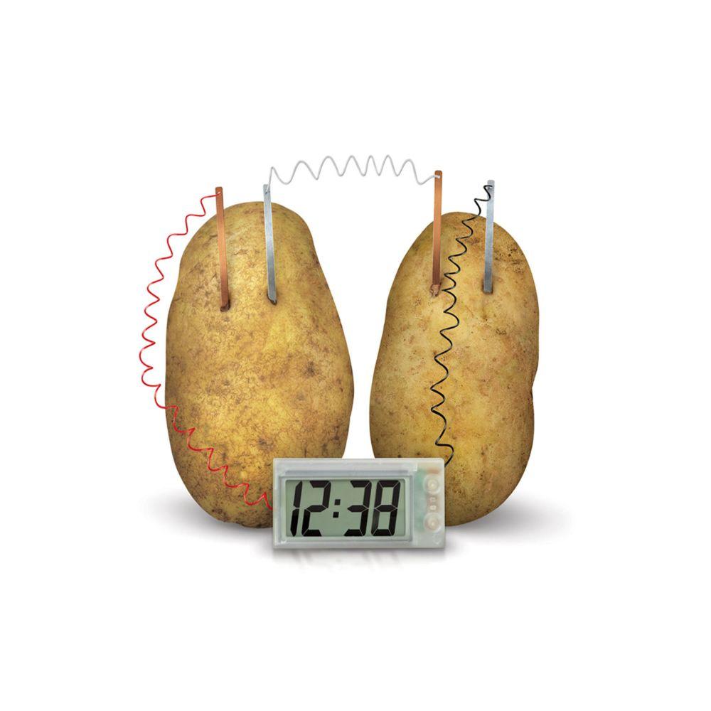 4M - Kidz Labs Kit de fabrication Green Science : Horloge pomme de terre