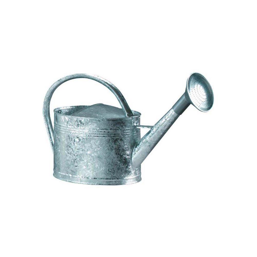 Guillouard Arrosoir acier galvanisé avec pomme 6 litres