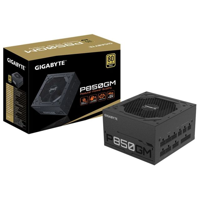 Gigabyte - P850GM 850W - 80 + Gold - Composants