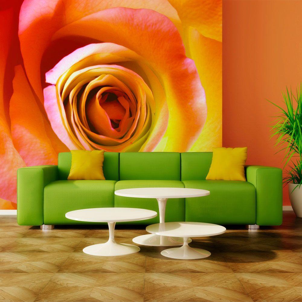 Bimago Papier peint   Rose du désert   200x154   Fleurs   Roses  