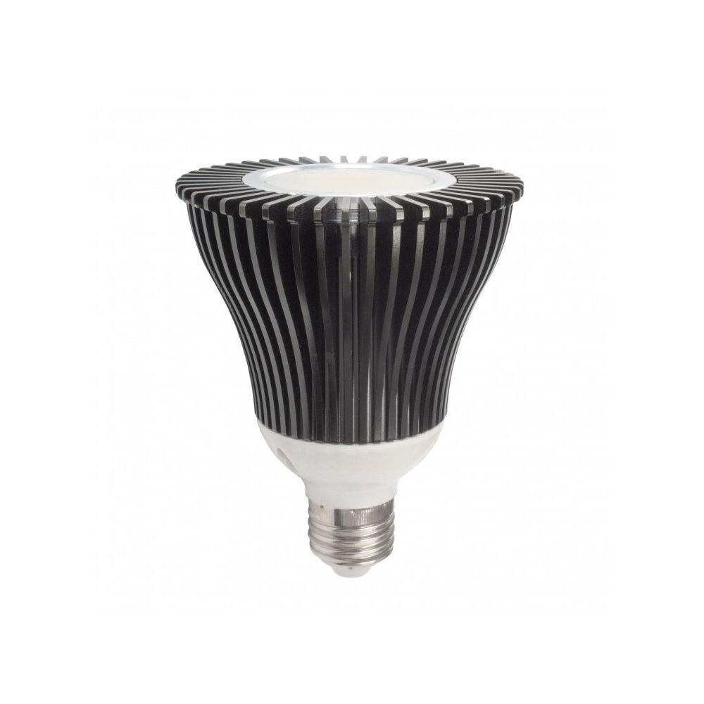 Ecolife Lightning - Ampoule LED E27 - 20W - COB Sharp - PAR30 - Blanc Chaud