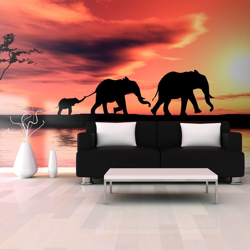 Declina Papier peint XXL - éléphants: famille