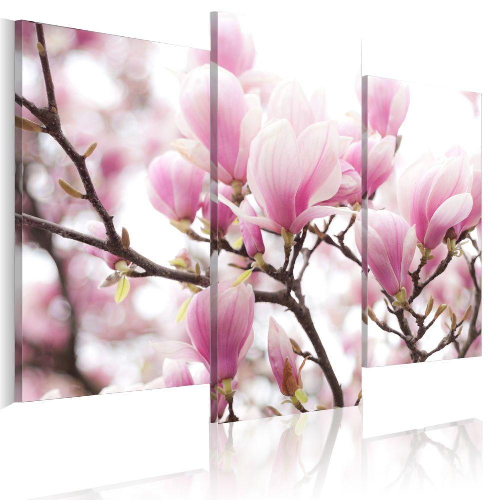 Bimago Tableau   Jardin au printemps   60x50   Fleurs   Magnolias  