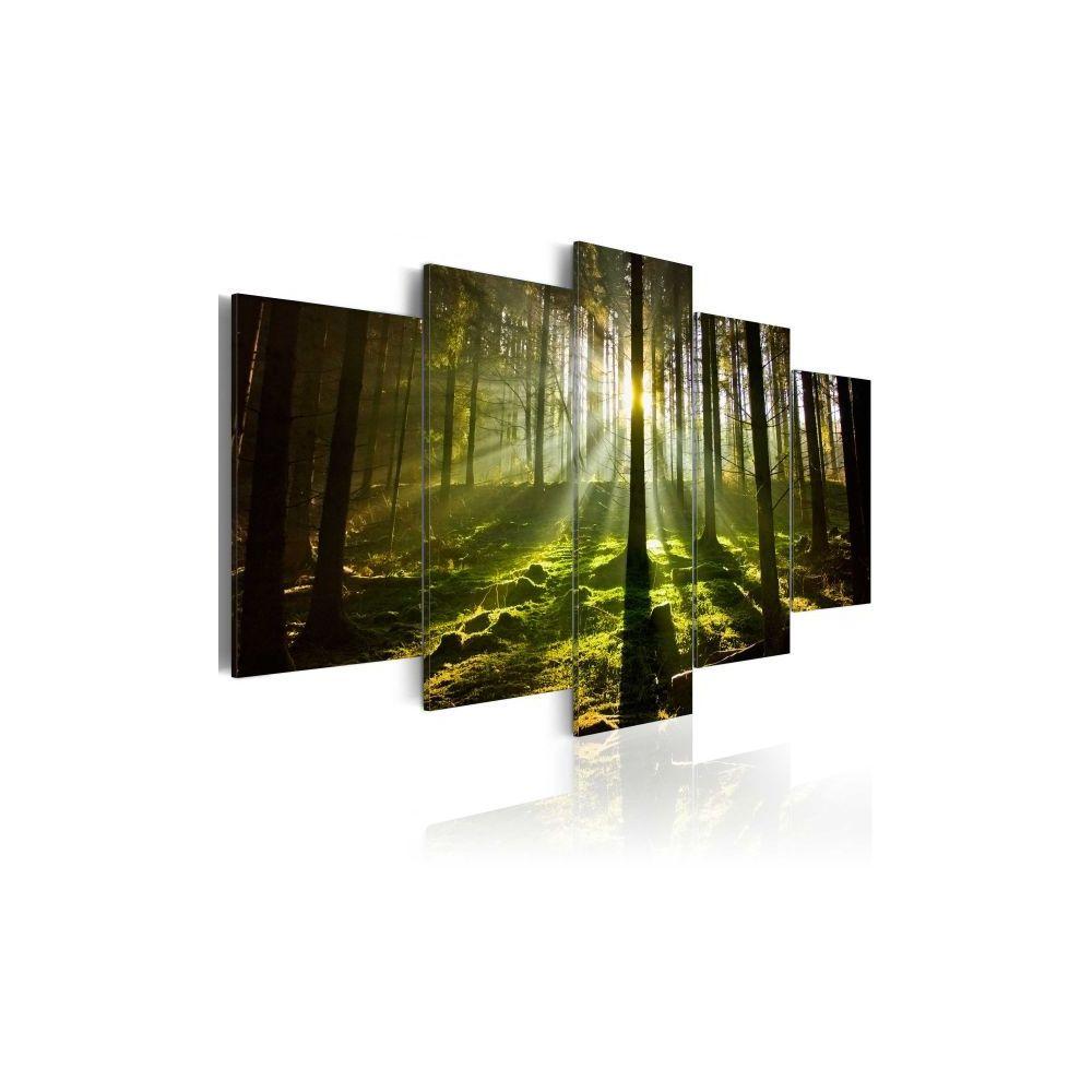 Planete Discount Tableau Silence de printemps Taille 200 x 100 cm