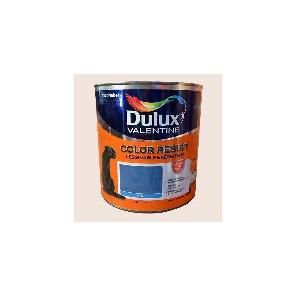 Dulux Valentine Dulux Valentine Peinture acrylique Color Resist Plâtre rose Mat