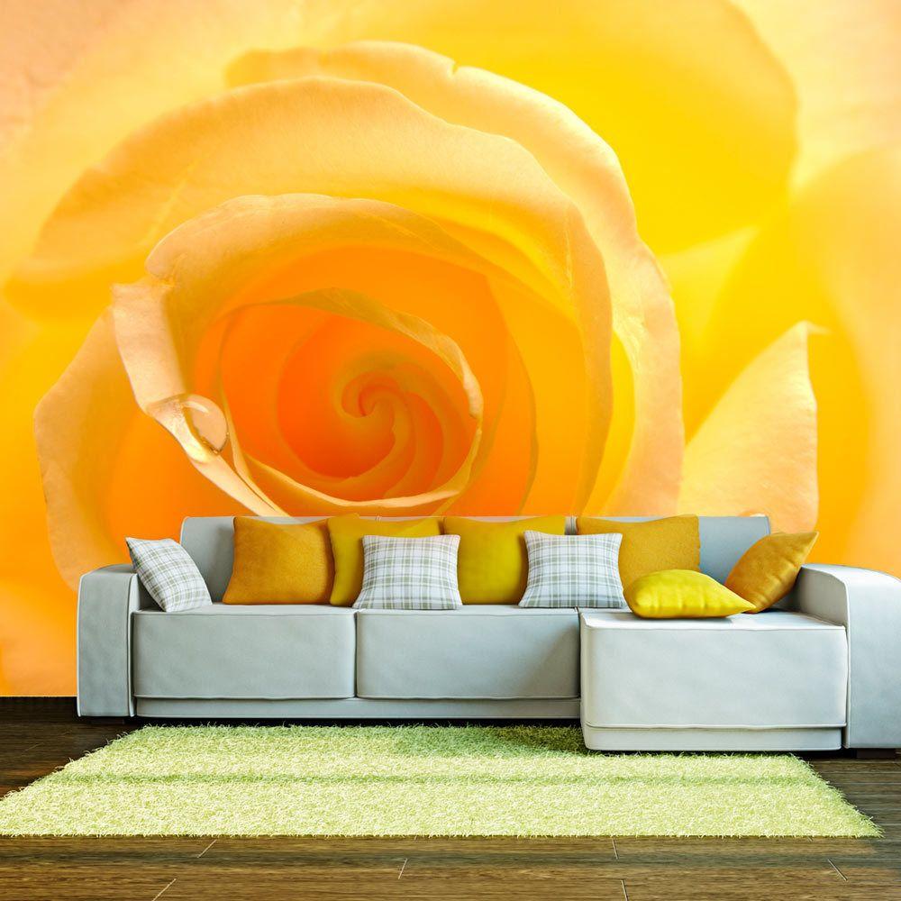 Bimago Papier peint   Rose jaune   300x231   Fleurs   Roses  