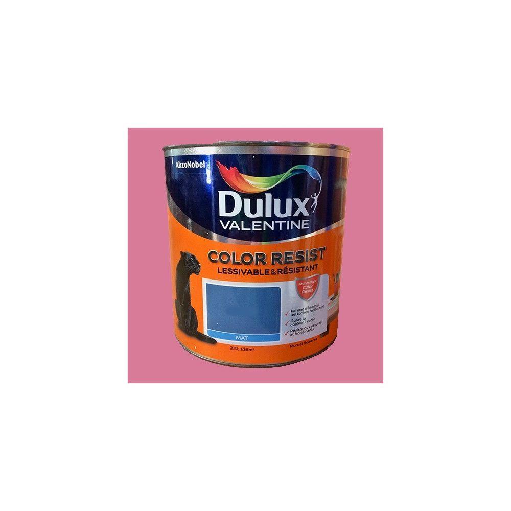 Dulux Valentine Dulux Valentine Peinture acrylique Color Resist Ultra rose Mat