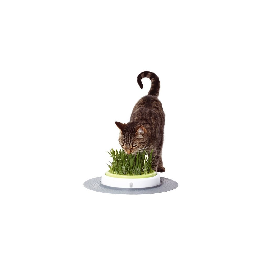 Cat It/Hagen Jardin d'herbe à chat - Cat It Senses 50755 - Hagen