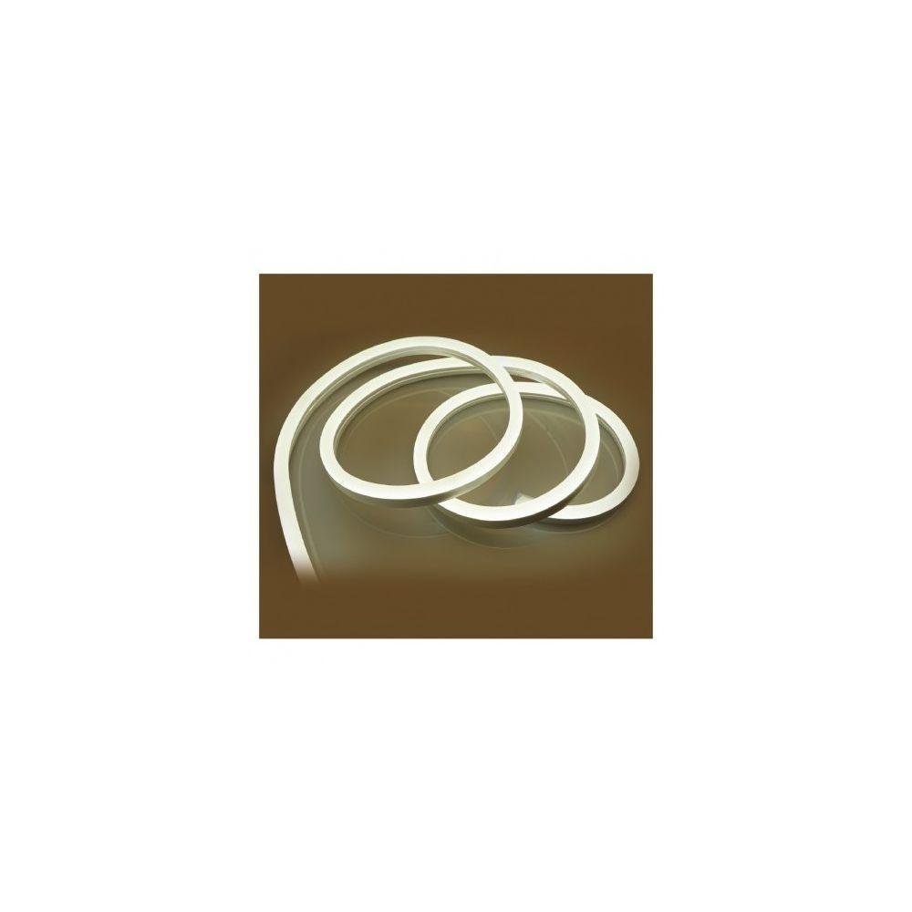 Vision-El Bobine neon flex led 6000 k 50 m 230V ip65 27 x 15 mm