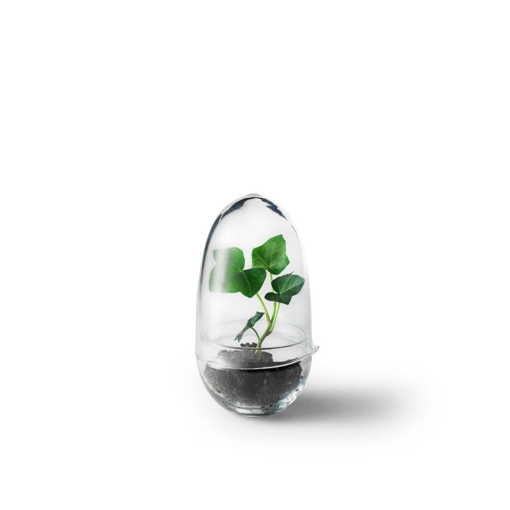 Design House Stockholm Mini-serre Grow - S