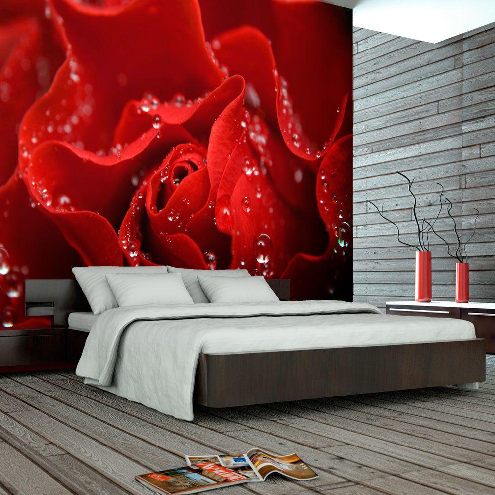 Bimago Papier peint | Rose couverte de rosée | 350x270 | Fleurs | Roses |