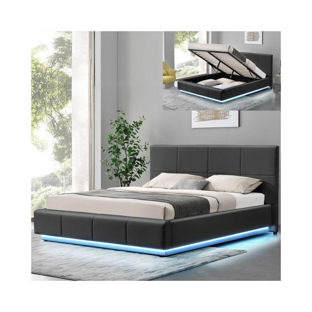 Meubler Design Lit design Alexi avec sommier et coffre de rangement - Gris - 160x200