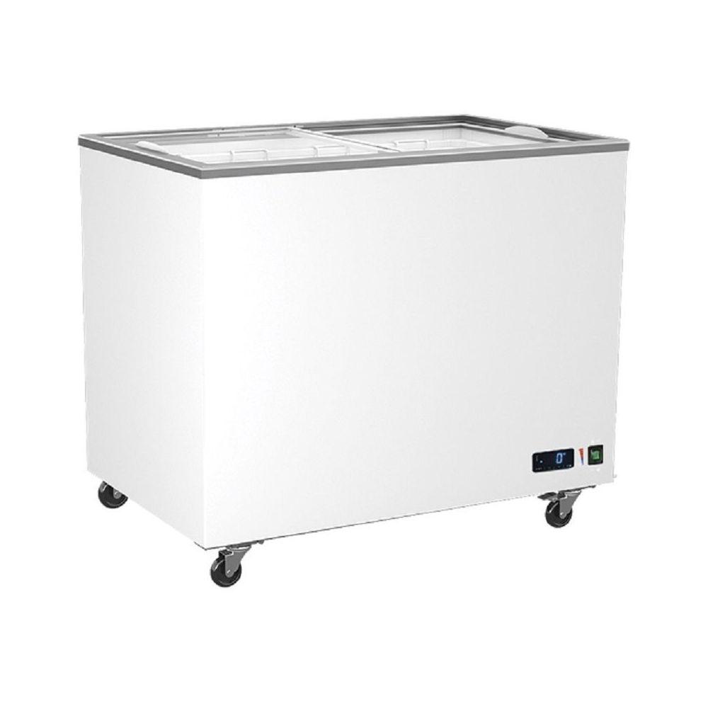 Materiel Chr Pro Congélateur Vitrées Portes Coulissantes - 208 à 640 Litres - Virtus - R600A 314 litres 1039 mm