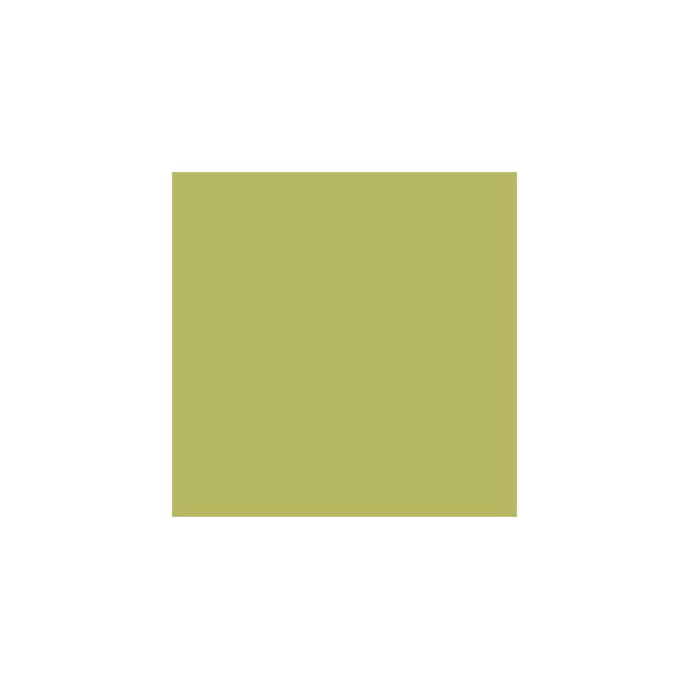 Adzif Biz Rouleau adhésif - Papier peint autocollant Aspect Satiné Vert Thé (17 m x 61,5 cm)