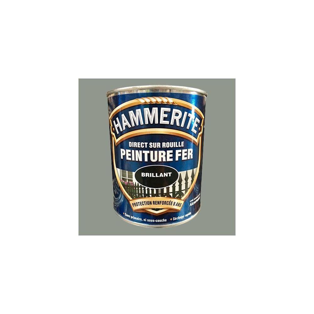 Hammerite HAMMERITE Peinture Fer Direct sur Rouille Gris Nuage Brillant