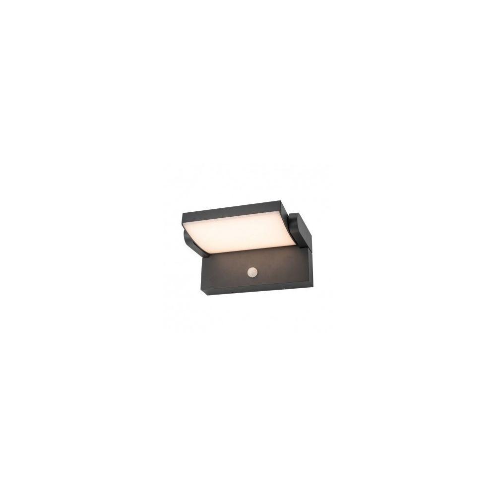 Vision-El Applique Murale Orientable LED 12W 720 LM Détecteur 4000 K Gris IP54