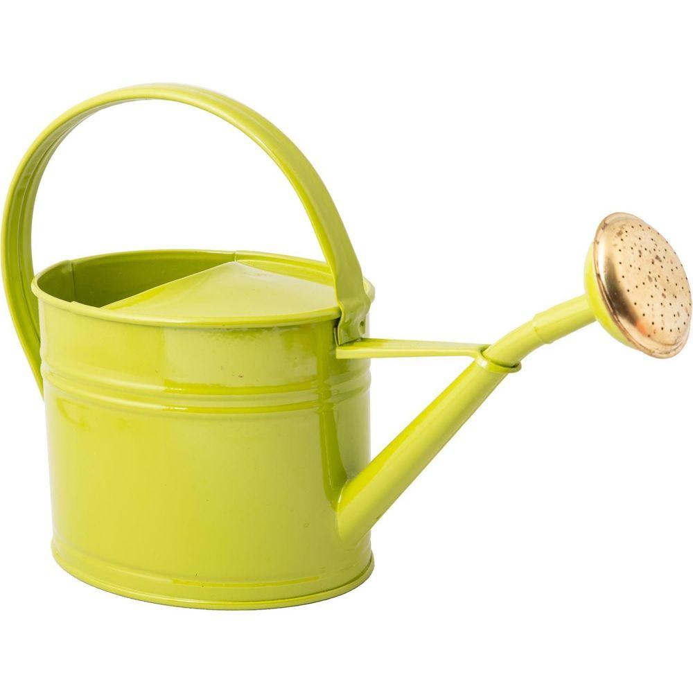 Guillouard Arrosoir en acier galvanisé avec pomme 1.75 litres