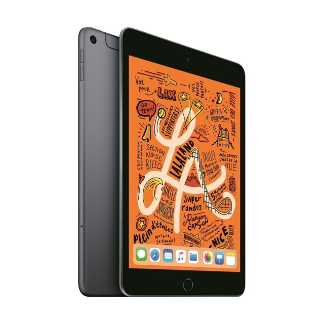 Apple - iPad mini 2019 - 64 Go - Wifi - Gris sidéral - Tablette tactile