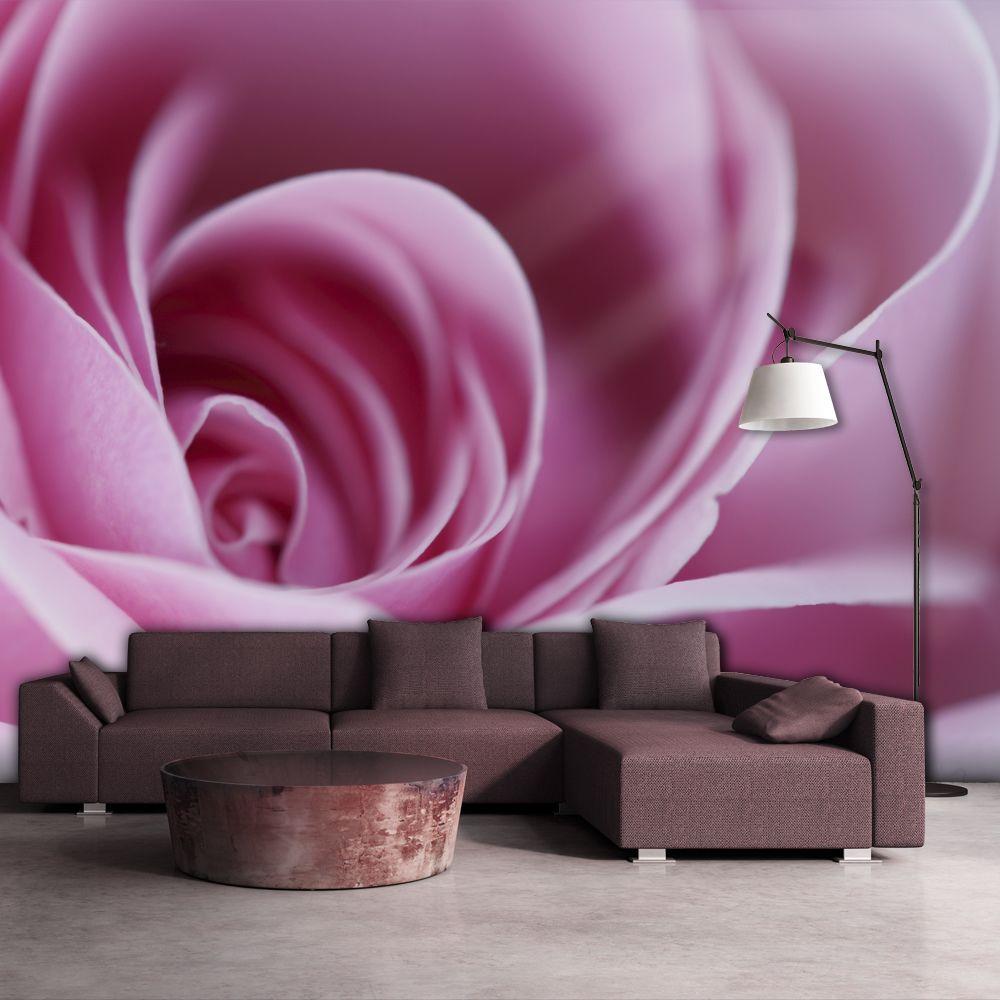 Bimago Papier peint - Rose rose - Décoration, image, art | Fleurs | Roses |