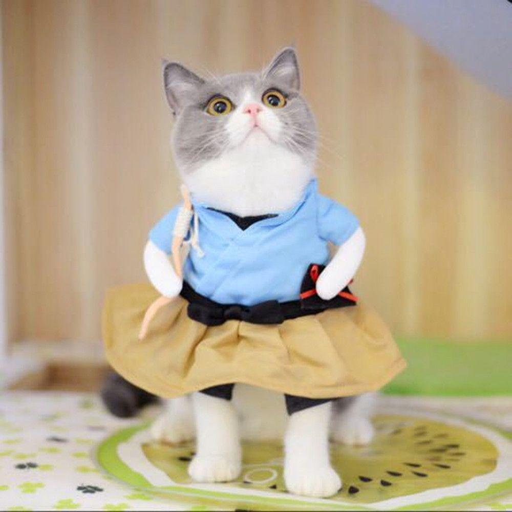 Wewoo Costume De Chien Drole De Chat Uniforme Vetements De De De Chiot Habiller De Soiree Pour Les De Cosplay Chattaille Xl Urashima Taro Vetement Pour Chien Rue Du Commerce