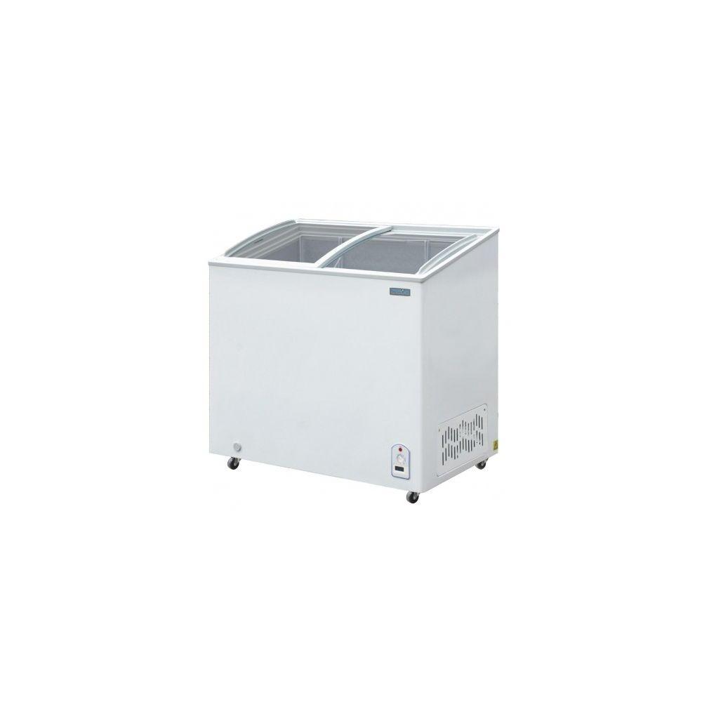 Polar Congelateur Vitre Professionnel 200 L - Polar - R600A