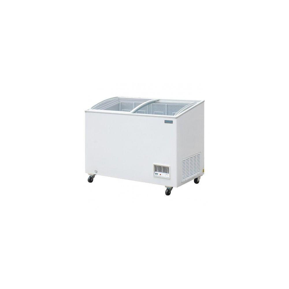 Polar Congélateur Vitre Professionnel - 270 L - Polar - R290