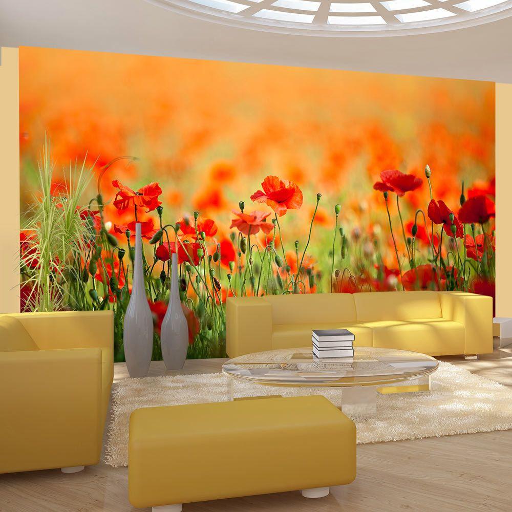 Bimago Papier peint - Coquelicots, beaux jours d'été - Décoration, image, art | Fleurs | Coquelicots | 450x270 cm | XXl - Grand
